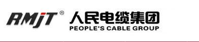 人民电缆集团拉线角度传感器